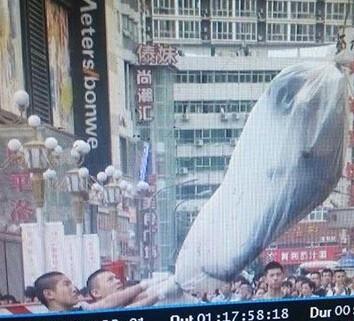 二七广场墙缝女尸引唏嘘 警方已经介入调查