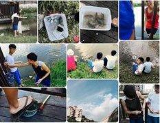 台北高中生集体虐龟 网友:一只充满忧郁的台湾乌龟!